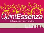 Quintessenza -  Events Savigliano - Shows Savigliano