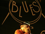Tropea blues festival -  Events Tropea - Shows Tropea