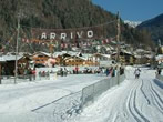 Pinzolo-Carisolo Cross-Country Skiing Centre -  Events Carisolo - Attractions Carisolo