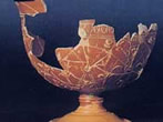 Archeological Museum -  Events Bibbiena - Attractions Bibbiena