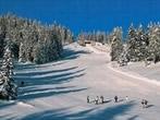 Folgarida Marilleva ski area -  Events Folgarida - Attractions Folgarida
