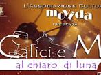 Calici e musica al chiaro di luna -  Events Giulianova - Shows Giulianova