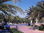 The beach -  Events Giulianova - Attractions Giulianova
