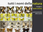 All the names of nature -  Events Pordenone - Art exhibitions Pordenone