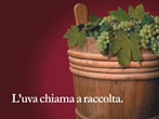 Welcome vintage -  Events Frascati - Shows Frascati