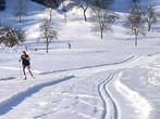 Cross Country Skiing -  Events Valtournenche - Attractions Valtournenche