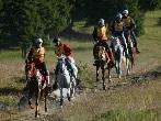 Valle d'Aosta endurance cup -  Events Torgnon - Sport Torgnon