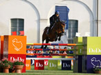 International show jumping Modena -  Events Modena - Sport Modena