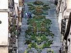 The flowered steps -  Events Caltagirone - Shows Caltagirone