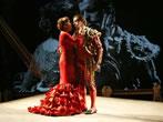 Rassegna Lirica Torelliana - Fano Opera Festival -  Events Fano - Theatre Fano