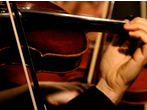 Olympic theatre orchestra -  Events Vicenza - Concerts Vicenza
