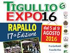 Rapallo expo -  Events Rapallo - Exhibition Rapallo