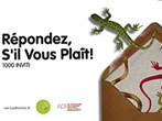 Repondez s'il vous plait! -  Events Omegna - Art exhibitions Omegna