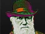 Charles Darwin 1809–2009 -  Events Bari - Art exhibitions Bari