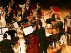 Musika & Musika -  Events Trieste e Venezia Giulia - Concerts Trieste e Venezia Giulia