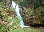 Vallone delle Ferriere -  Events Amalfi coast - Attractions Amalfi coast