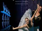 Swan lake -  Events Ragusa - Theatre Ragusa