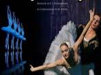 Swan lake -  Events Ragusa - Theatre Ragusa