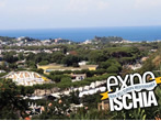 Expo Ischia Summer -  Events Ischia - Shows Ischia