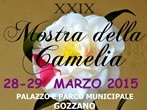 Camelia show -  Events Gozzano - Art exhibitions Gozzano