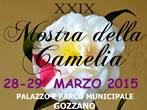 Camelia show -  Events Gozzano - Art exhibitions Gozzano