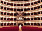San Carlo Theatre: season -  Events Amalfi coast - Theatre Amalfi coast