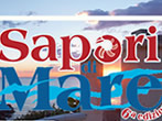 Sapori di mare -  Events Sperlonga - Shows Sperlonga