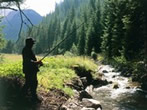 Fishing season image - Val di Fiemme - Events Attractions