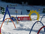 Alpe del Cermis Ski area -  Events Val di Fiemme - Attractions Val di Fiemme