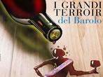 I grandi terroir del Barolo -  Events Serralunga d'Alba - Shows Serralunga d'Alba