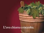 Welcome vintage -  Events La Morra - Shows La Morra