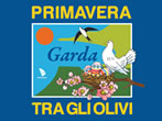 Primavera tra gli olivi -  Events Garda - Shows Garda