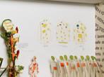 Gianfranco Baruchello -  Events Rovereto - Art exhibitions Rovereto