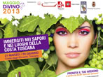 Borgovino -  Events Suvereto - Shows Suvereto