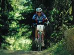 Gran Paradiso Bike -  Events Cogne - Sport Cogne