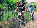 Soave Bike -  Events Soave - Sport Soave
