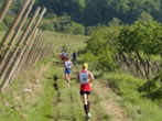 Trail Soave - Bolca -  Events Soave - Sport Soave