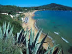 Lido -  Events Elba island - Attractions Elba island