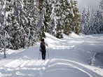 Cross-country skiing -  Events Val Gardena - Sport Val Gardena
