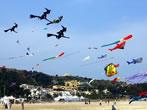 Kites Festival -  Events San Vito Lo Capo - Shows San Vito Lo Capo