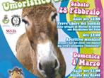 Corsa dei somari, il palio umoristico -  Events Campo nell'Elba - Shows Campo nell'Elba