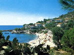 Seccheto -  Events Elba island - Attractions Elba island