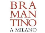 Bramantino in Milan -  Events Milan - Art exhibitions Milan