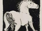 Picasso illustratore - Eventi Milano - Mostre Milano