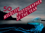 Wildlife Photographer of the year -  Events Milan - Art exhibitions Milan