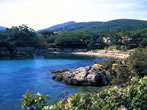 Cala dell'alga -  Events Elba island - Attractions Elba island