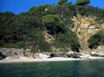 Luisi d'Angelo -  Events Elba island - Attractions Elba island