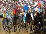 Il Palio di Asti -  Events Asti - Shows Asti