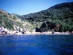 Beaches you can reach by sea -  Events Elba island - Attractions Elba island