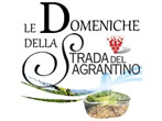 Sunday on the Segrantino raod -  Events Montefalco - Shows Montefalco